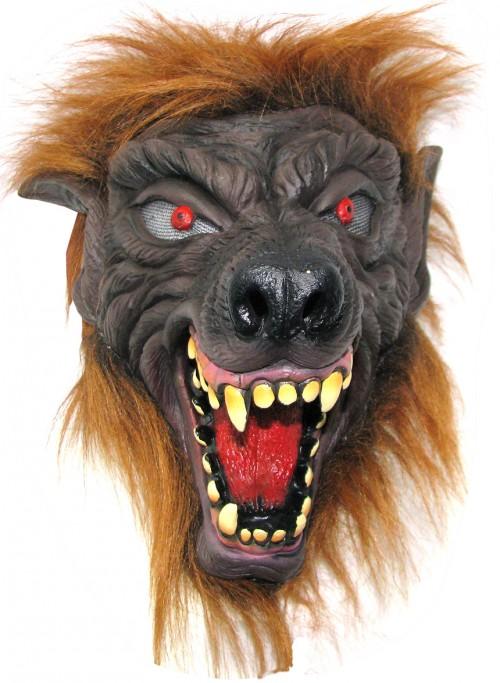N63018wolflongnose