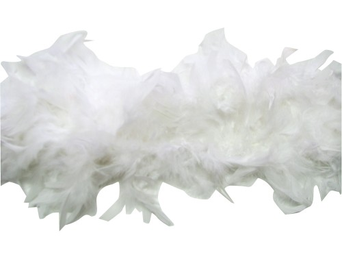Par100-whiteboa