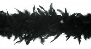 featherBoaBlkDelxNBX14